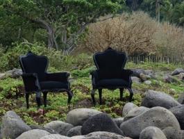 polart stoelen hoveniersbedrijf jutten