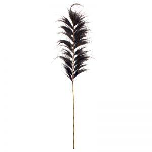 grote-hooipluim-zwart-enkel