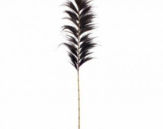 Tropische hooipluim zwart 230cm